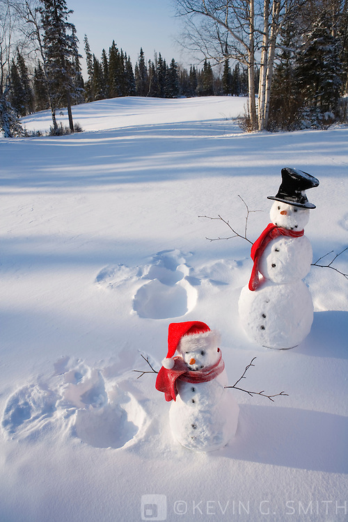 Parent and child snowmen with red scarfs  black top and santa hat standing next to snow angels they made,  snowy meadow spruce forest in back ground.