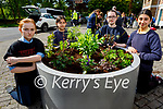Tralee Presentation NS students planting new flowers at the Ashe Memorial on Friday as part of a project by Kerry County Council and Tralee Tidy Towns. L to r: Saoirse Cavanagh, Arinda Kreziu, Antonia Doherty and Valantina Attallah.