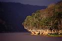 Dry deciduous forest growing on limestone karst, Manambolo Gorge, Bemaraha National Park, western Madagascar.