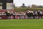 .Arc de Triomphe in Paris.  Sea of the Stars (Irl) wins the race. Jockey MJ Kinane, Owner : Christopher Tsui.