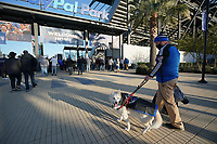 SAN JOSE, CA - MAY 1: A dog in Quakes gear before a game between D.C. United and San Jose Earthquakes at PayPal Park on May 1, 2021 in San Jose, California.