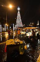 SAO PAULO, SP, 28.11.2015 - ARVORE-IBIRAPUERA - Muita chuva dispersou o publico pouco após a Inauguração da árvore de Natal do Parque do Ibirapuera, na zona sul de São Paulo, na noite deste sabado, 28. Com 35 metros de altura e 15 de diâmetro, é a menor árvore de natal desde que começou ser exibida em 2002.(Foto: Levi Bianco/Brazil Photo Press)