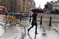 World's first animatronic leopard to joins the  Trafalgar Square Lions to launch Big Cat Week 2017, London.<br /> <br /> <br /> ©Ash Knotek  D3237  08/03/2017