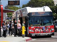 215 Bus