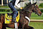 Watch Me Go on the Churchill Downs track on April 30, 2011.