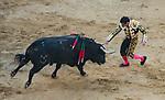 Feria de Fallas 2017.<br /> Corrida de Toros.<br /> El Fandi - Manzanares - Roca Rey.<br /> Toros de Nuñez del Cuvillo.<br /> Valencia, Valencia (Spain).<br /> 17 de marzo de 2017.