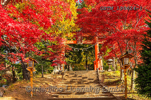 Tom Mackie, LANDSCAPES, LANDSCHAFTEN, PAISAJES, photos,+Asia, Japan, Japanese, Tom Mackie, Torii gate, Worldwide, autumn, autumnal, color, colorful, colour, colourful, fall, horizon+tal, horizontals, maple, nobody, red, seasons, tree, trees, world wide, world-wide,Asia, Japan, Japanese, Tom Mackie, Torii g+ate, Worldwide, autumn, autumnal, color, colorful, colour, colourful, fall, horizontal, horizontals, maple, nobody, red, seas+ons, tree, trees, world wide, world-wide+,GBTM190624-1,#l#, EVERYDAY