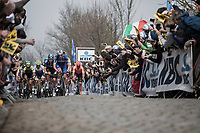 Tim Declercq (BEL/Quick Step Floors) leading the peloton on the first passage of the Oude Kwaremont.  <br /> <br /> 103th Ronde van Vlaanderen 2019<br /> One day race from Antwerp to Oudenaarde (BEL/270km)<br /> <br /> ©kramon