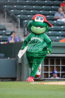 Greenville Drive mascot Reedy Rip'It before a game with the Lexington Legends on Sunday, August 18, 2013, at Fluor Field at the West End in Greenville, South Carolina. Greenville won the second game of a doubleheader, 1-0. (Tom Priddy/Four Seam Images)