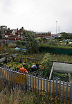 Port Vale 3 Doncaster Rovers 0, 22/08/2015. League One, Vale Park. Men working an allotment behind the KMF stand at Vale Park. Photo by Paul Thompson.