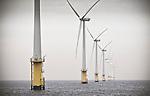 The offshore windpark, Egmond aan Zee.