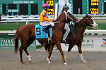 February 21, 2015: Big Big Easy with Richard E Eramia up in the Risen Star Stakes at the New Orleans Fairgrounds Risen Star Stakes Day. Steve Dalmado/ESW/CSM