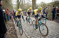 Sep Vanmarcke (BEL/LottoNL-Jumbo) is piloted by teammates Jos van Emden (NLD/LottoNL-Jumbo) & Robert Wagner (DEU/LottoNL-Jumbo) over the Taaienberg cobbles<br /> <br /> Omloop Het Nieuwsblad 2015