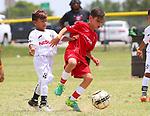 RICHARDSON, TX - JUNE 18: Alianza DE Futbol at University of Texas at Dallas in Richardson on June 18, 2017 in Richardson,  Texas. (Photo by Rick Yeatts/)
