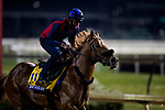 October 30, 2018 : Mind Your Biscuits, trained by Chad Summers, exercises in preparation for the Breeders' Cup Sprint at Churchill Downs on October 30, 2018 in Louisville, Kentucky. Evers/ESW/CSM