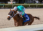 January 02, 2021:  #3 Competitive Speed with jockey Leonel Reyes on board wins the Glitter Woman Stakes at Gulfstream Park on January 02, 2021, in Hallandale Beach, Florida. Liz Lamont/Eclipse Sportswire/CSM