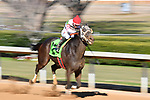 January 22, 2021 .Smarty Jones horse race at Oaklawn Racing Casino Resort in Hot Springs,  Arkansas.  (Ted McClenning photographer)