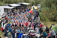 up the Cima Gallisterna Climb (2.3km @ 7%)<br /> <br /> Men's Elite Road Race from Imola to Imola (258km)<br /> <br /> 87th UCI Road World Championships 2020 - ITT (WC)<br /> <br /> ©kramon