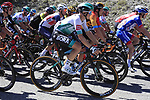 The peloton including Gregor Muhlberger (AUT) Bora-Hansgrohe take it easy during Stage 5 of Tour de France 2020, running 183km from Gap to Privas, France. 2nd September 2020.<br /> Picture: Bora-Hansgrohe/BettiniPhoto   Cyclefile<br /> All photos usage must carry mandatory copyright credit (© Cyclefile   Bora-Hansgrohe/BettiniPhoto