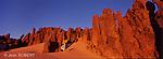 Au sud est du massif du Hoggar, le aiguilles de grès de Tin Akacheker (chateau en touareg) sculptées par le vent sont considérées comme les joyaux du Sahara.Tassilis du Hoggar. Algérie.At the south east of the Hoggar mountains, the sandstone needles of Tin Akacheker (castle in Tuareg) sculpted by the wind are known as the jewels of the Sahara.Tassilis of Hoggar. Algeria.