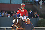 HOT SPRINGS, AR - MARCH 19: Jockey Joseph Rocco, Jr. aboard Call Pat #1 fist pumping to the camera after winning the Azeri Stakes at Oaklawn Park on March 19, 2016 in Hot Springs, Arkansas. (Photo by Justin Manning/Eclipse Sportswire/Getty Images)