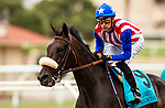 JULY 24, 2021: Madone and JJ Hernandez defeat Going Global and Flavien Prat to win the San Clemente Stakes at Del Mar Fairgrounds in Del Mar, California on July 24, 2021. Evers/Eclipse Sportswire/CSM