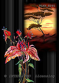 Kris, ETHNIC, paintings,+savanna, flowers++++,PLKKE291,#ethnic# étnico, illustrations, pinturas