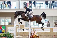 NZL-Georgia Bouzaid rides Vitess. Final-2nd. Class 31: Land Rover Horse 1.20m-1.25m 10K - FINAL. 2021 NZL-Easter Jumping Festival presented by McIntosh Global Equestrian and Equestrian Entries. NEC Taupo. Sunday 4 April. Copyright Photo: Libby Law Photography