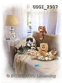 GIORDANO, CUTE ANIMALS, LUSTIGE TIERE, ANIMALITOS DIVERTIDOS, paintings+++++,USGI2907,#AC#