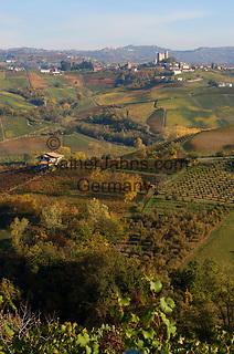Italien, Piemont, Langhe, bei Alba: Weinanbau, im Hintergrund Weinort Serralunga d'Alba | Italy, Piedmont, Langhe, near Alba: wine growing estates, background: village Serralunga d'Alba