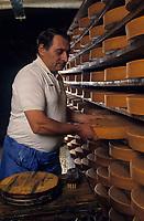 """Europe/Italie/Val d'Aoste/  Aoste : Dans une cave d'affinage de la """"Fontine"""" Fromage au lait cru de vache"""