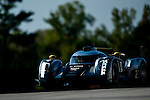 Tom Kristensen (DNK) / Allan McNish (SCO) / Dindo Capello (ITA), #2 Audi Sport Team Joest Audi R18 chassis, LMP1 category during practice for the 14th annual Petit Le Mans held at Road Atlanta in Braselton GA, USA.