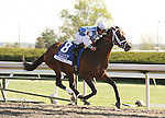17 April 2010. Exhi and Robby Albarado win the 29th running of the Coolmore Lexington (GRII).