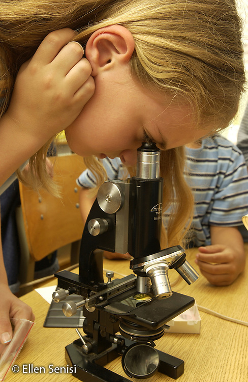 MR / Schenectady,NY.Yates Arts-in-Education Magnet School, urban public school, Grade 3.Girl (8) looks through light microscope at pond water during science/writing enrichment lesson..MR: Bre5.©Ellen B. Senisi