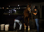 HALLANDALE BEACH, FL - JANUARY 26: Collected and Jimmy Barnes at the Pegasus World Cup Invitational at Gulfstream Park Race Track on January 26, 2018 in Hallandale Beach, Florida. (Photo by Alex Evers/Eclipse Sportswire/Getty Images)