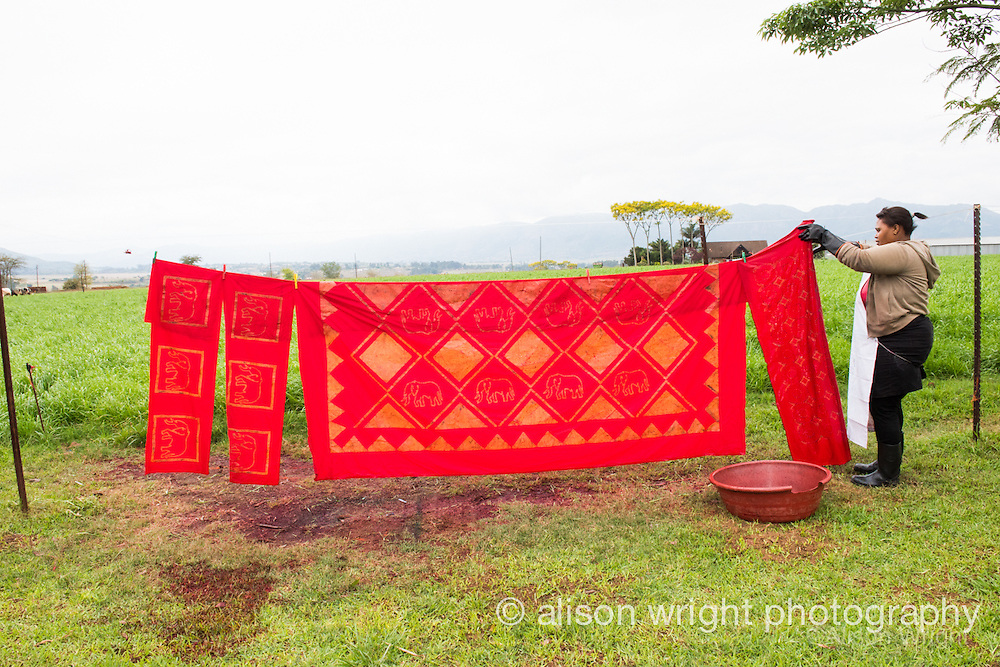 Africa, Swaziland, Malkerns.Nest organization artisan project, partnering with Baobab Batik & local artisans to help market their products to global markets and better sustain their local community. Drying batik.