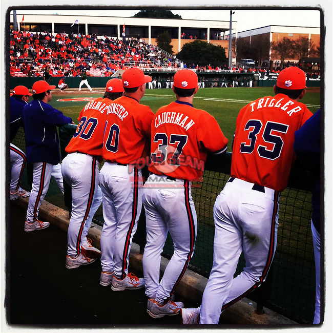 Clemson Tigers players in the dugout on Opening Day 2012. (Tom Priddy/Four Seam Images)