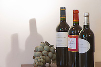 Chateau, L'Opera and La Syrah. sculpture of bunch of grapes. Chateau Villerambert-Julien near Caunes-Minervois. Minervois. Languedoc. France. Europe. Bottle.