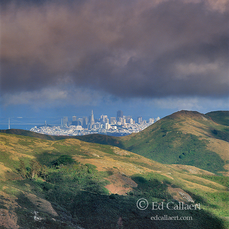 San Francisco, Marin County Headlands, Golden Gate National Recreation Area, California