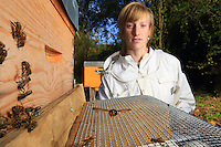 In the apiary at the CNRS (national center for scientific research) in Toulouse, Lucie Hotier, the beekeeper with the experimental apiary, does a head count of the Asian hornets in front of a hive equipped with an experimental system designed to limit the hornets' predation.///Au rucher du CNRS à Toulouse, Lucie Hotier, l'apicultrice du rucher expérimentale effectue un comptage des frelon asiatique devant un ruche «équipé d'un système expérimental sensé limiter la prédation des frelons.