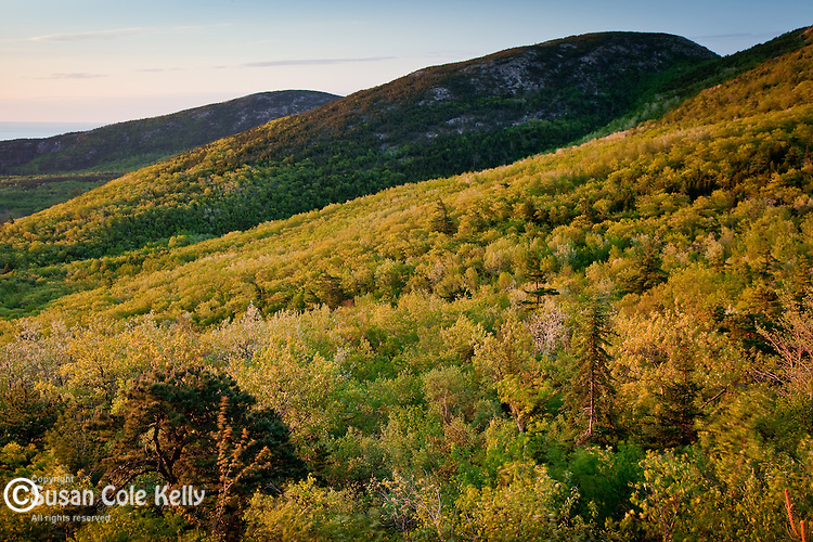 Cadillac Mountain sunrise in Acadia National Park, Downeast, ME, USA