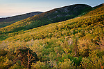 Cadillac Mountain sunrise in Acadia National Park, Downeast, ME, USA