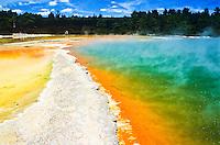 Champagne Pool in Wai-O-Tapu Thermal Reserve - Rotorua, New Zealand