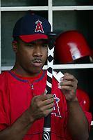 Garret Anderson of the Anaheim Angels during a 2003 season MLB game at Angel Stadium in Anaheim, California. (Larry Goren/Four Seam Images)