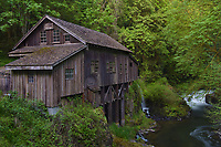 Cedar Creek Water Mill, Washington