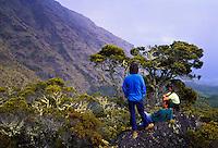 Hikers in Haleakala Crater. Island of Maui.