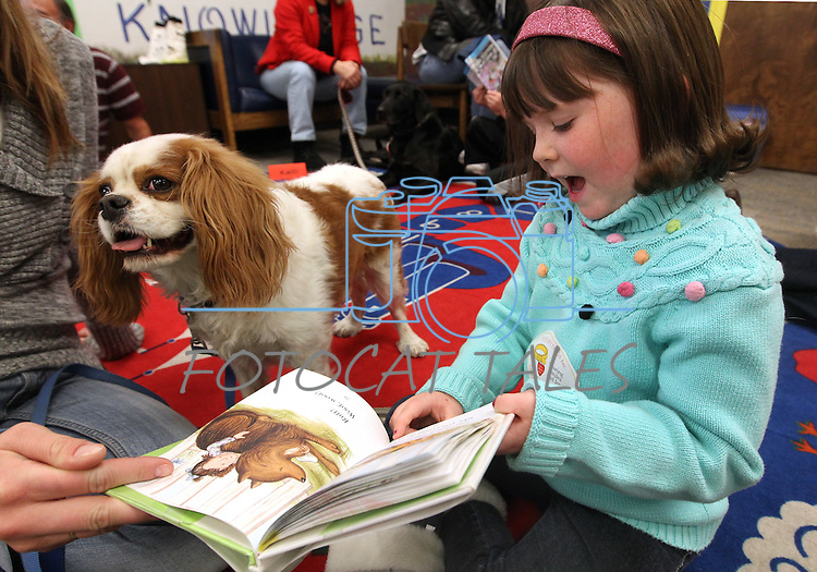 Anna Roylance, 5, reads to Biscuit during a Love on A Leash event at the Carson City Library, in Carson City, Nev., on Saturday, Dec. 17, 2011. .Photo by Cathleen Allison