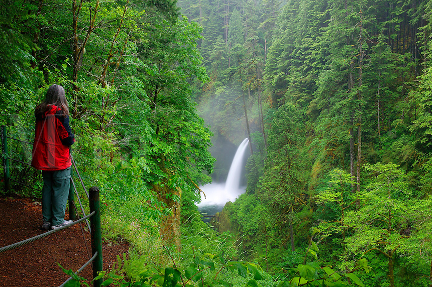 A visitor (mr) views the Metlako Falls along the Eagle Creek Trail, Columbia River Gorge National Scenic Area, Oregon