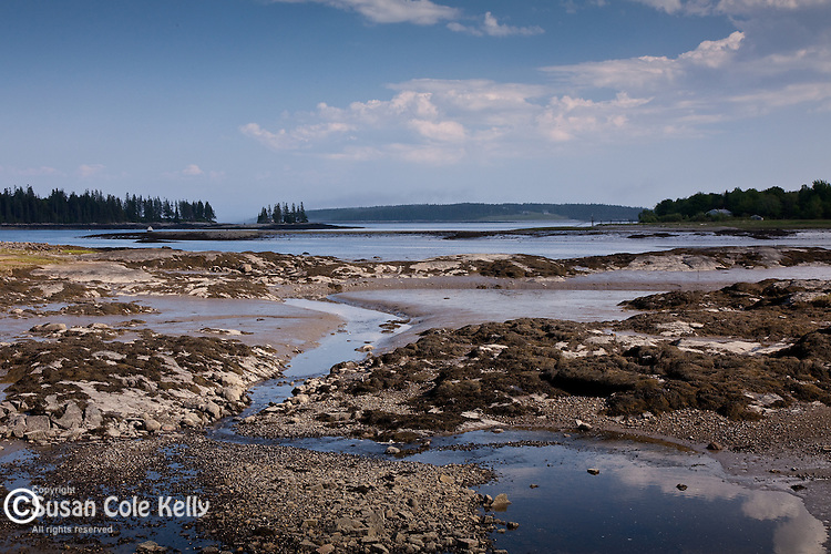 Tidal flats in St George, ME, USA