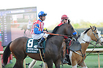 April 12, 2014: #8 Bayern with jockey Gary Stevens aboard before the start of the Arkansas Derby (Grade I) at Oaklawn Park in Hot Springs, AR. Zoie Clift/ESW/CSM